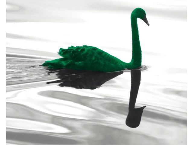 Coverbild der BIZ-Studie The green swan von Januar 2020